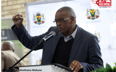 Health4Sale Part 6: Magashule cleared way for controversial private ambulance company to cash in