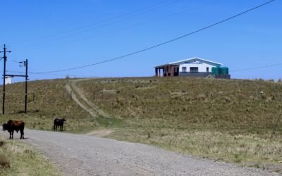 Mankosi Clinic: The long and winding road to rural healthcare
