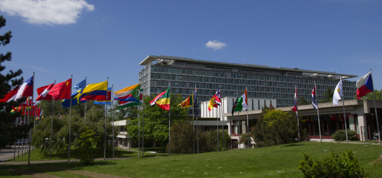 Analysis: The politics and promise behind a proposed pandemic treaty