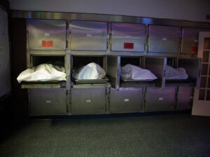 morgue storage drawers. To help families trying to find and identify their loved ones, the Gauteng Department of Health has developed an Internet Identification System meant to record and help track, and report demographic data of the deceased persons. PHOTO: John Biehler/Flickr